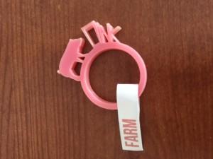 farm ring, LOHN_Little Objects for Huge Needs